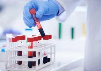 Показатели анализа крови при лейкозе у взрослых и детей