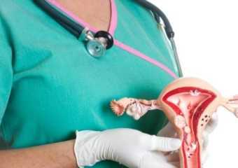 Рак тела матки: причины, классификация, лечение, прогноз