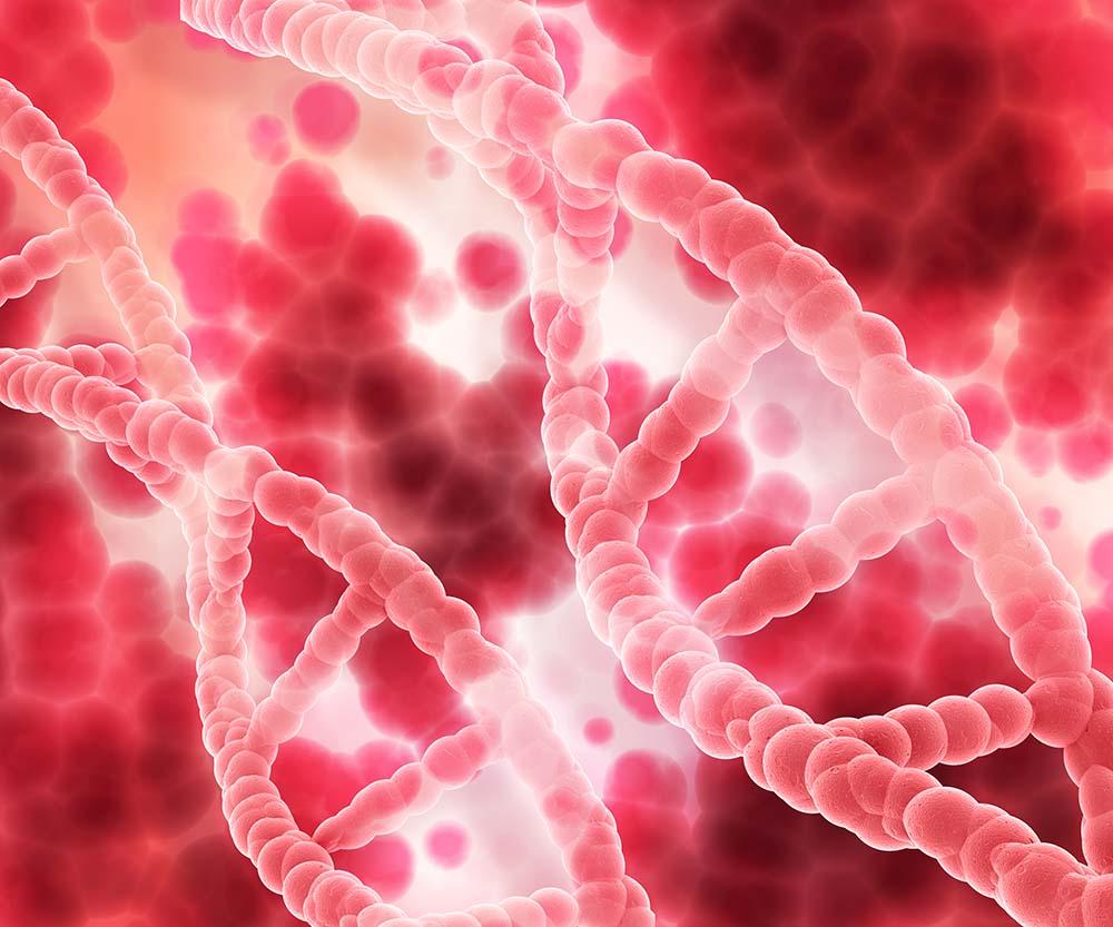 Спирали ДНК