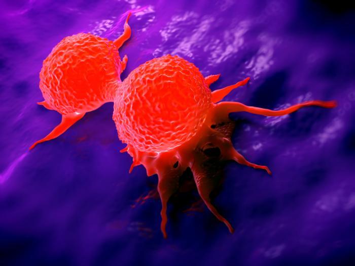 Красные клетки на синей поверхности